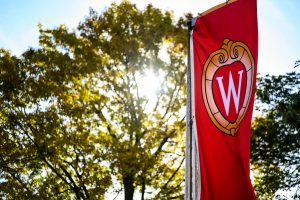 UW Madison flag with blue sky and tree