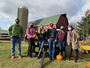 group of people apple picking